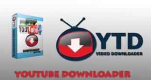 Download video dễ dàng với YTD Video Downloader Pro
